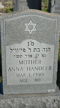 Anna Handler