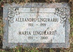 Alexandru Lingurariu