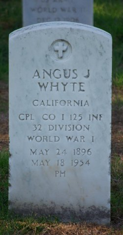 Angus J Whyte