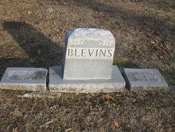 Dr Stephen S. Blevins