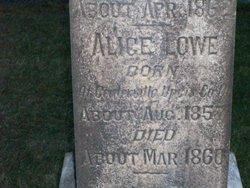 Alice Ann Lowe