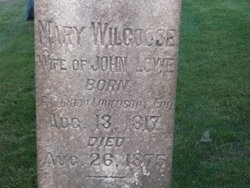 Mary <i>Wilgoose</i> Lowe