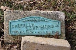 Eliza Drucilla Larrimore