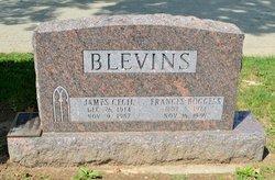 Frances <i>Boggess</i> Blevins