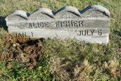 Alice <i>Tucker</i> Fisher
