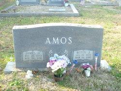 Betty Joyce <i>Howren</i> Amos
