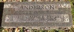 Simon Alfred Anderson