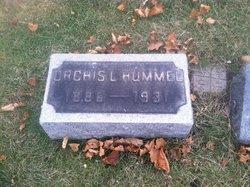 Orchis Laurel Hummel