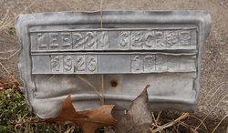 Leeroy Everett George