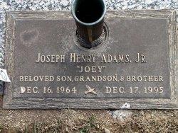 Joseph Henry Adams, Jr