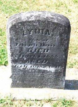 Lydia Ann <i>Shade</i> Bair