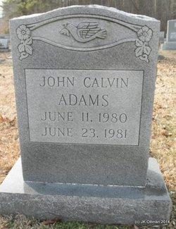 John Calvin Adams