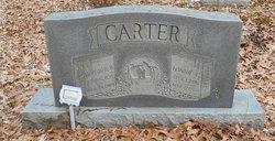 Mary Jane Janie <i>Hubbard</i> Carter