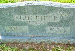 Alvin Bernhard Schneider
