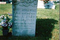 Mandy <i>Smallwood</i> Hale