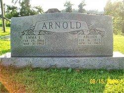 Abijah Arnold