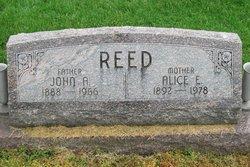 Alice E <i>Stamm</i> Reed