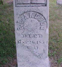 Ellen L <i>Merritt</i> Andrus