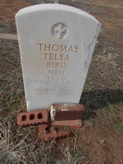 Thomas Telsa Bird