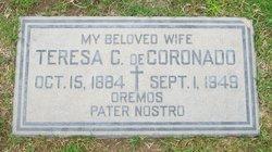 Teresa N. <i>Castillo</i> Coronado