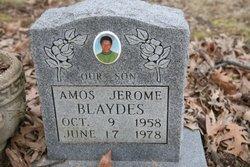 Amos Jerome Blaydes