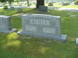 Minnie Alice <i>Cox</i> James