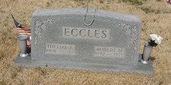 Robert M Eccles