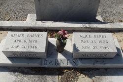 Alice <i>Berry</i> Barnes