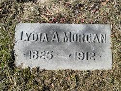 Lydia H Morgan
