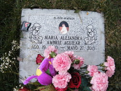 Maria Alejandra Ambriz Aguilar