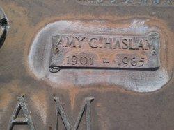 Amy C Haslam