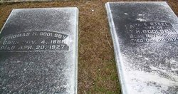 Mary Ann <i>Steele</i> Goolsby