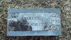 Lilly L Ferguson