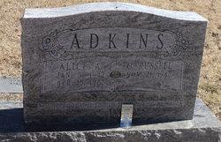 Alice A <i>Bush</i> Adkins