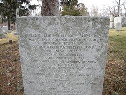 Rev Elihu Whittlasey Baldwin