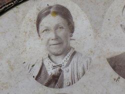 Nellie Ellen <i>Steele</i> Cook