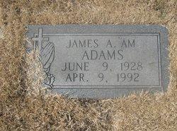 James Ambrose Adams