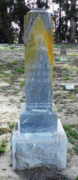 Albert M Foulks