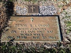 Teddy Roosevelt Lawing
