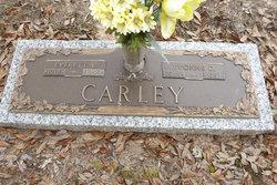 Yvonne D Carley
