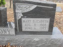 Mary E Anthony
