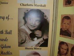 Sherry Diane Mincy