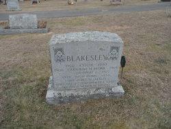 Catherine H <i>Brunk</i> Blakesley