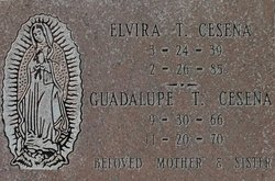 Guadalupe T. Cesena