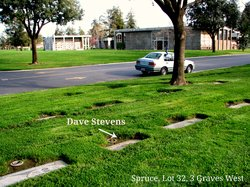 Dave Stevens