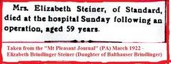 Elizabeth <i>Brindlinger</i> Steiner