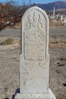 Mary Eliza <i>Conover</i> Jenkins
