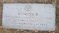 Agneda R Lucero