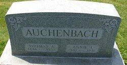 Annie I Auchenbach