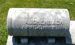 William L Auchenbach